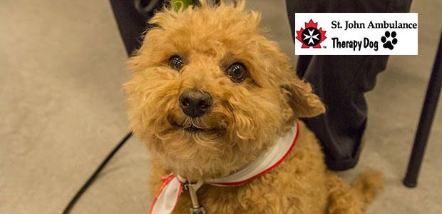 Therapy dogs at Interurban Library, Monday March 9, 1:30-2:30pm...