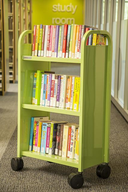 Check out the new books that are ready to be borrowed...